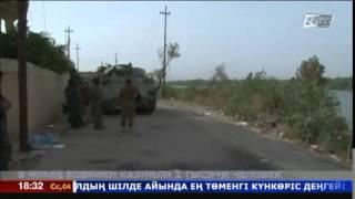 Более 2 тысяч человек за две недели казнили боевики ТГИЛ
