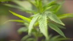 Medical marijuana bill passes Georgia House