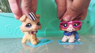 LPS:Never Have I Ever