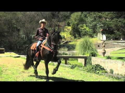 Indalfer Ochoa - Niña (Banda)