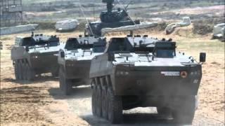 || U.S Army and German Army Power 2013 ||