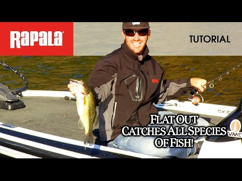 The Rapala® Shad Rap®: HOW TO FISH