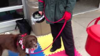Dog Gives To Salvation Army
