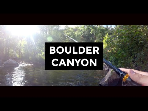 Trout Fishing - Boulder Canyon