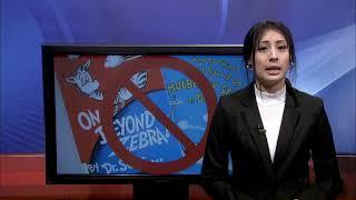 ntTV Noticias a las 3