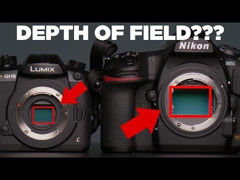No, Larger Sensors Do Not Produce Shallower Depth of Field