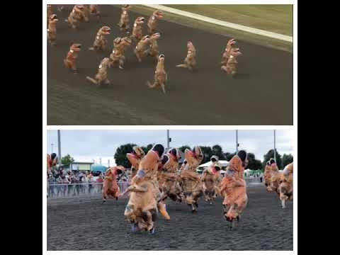 Theresarockface - The T-Rex Race is My Everything Today (Video)