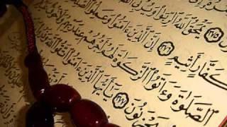 sourate-ar-rahman-recitee-par-saad-el-ghamidi