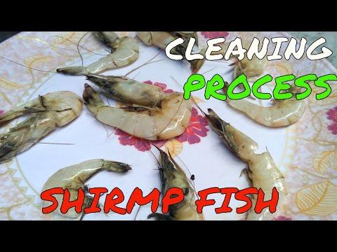 চিংড়ি মাছ  পরিষ্কার করার  ভিডিও || How to clean Shrimp || Cleaning Prawn