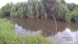 fishing toman 2013 07 19