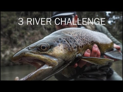 Fly Fishing New Zealand 3 River Challenge