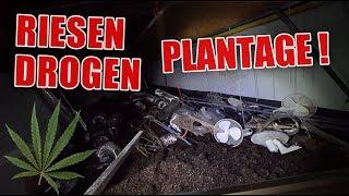 LOSTPLACE : Drogen im großen Stil angebaut ! Wahnsinns Anlage ! | ItsMarvin
