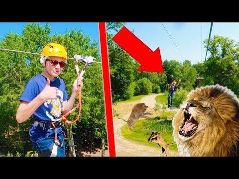 JE VOLE AU DESSUS DES LIONS ! - Néo The One
