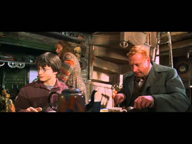Meet the Weasley's