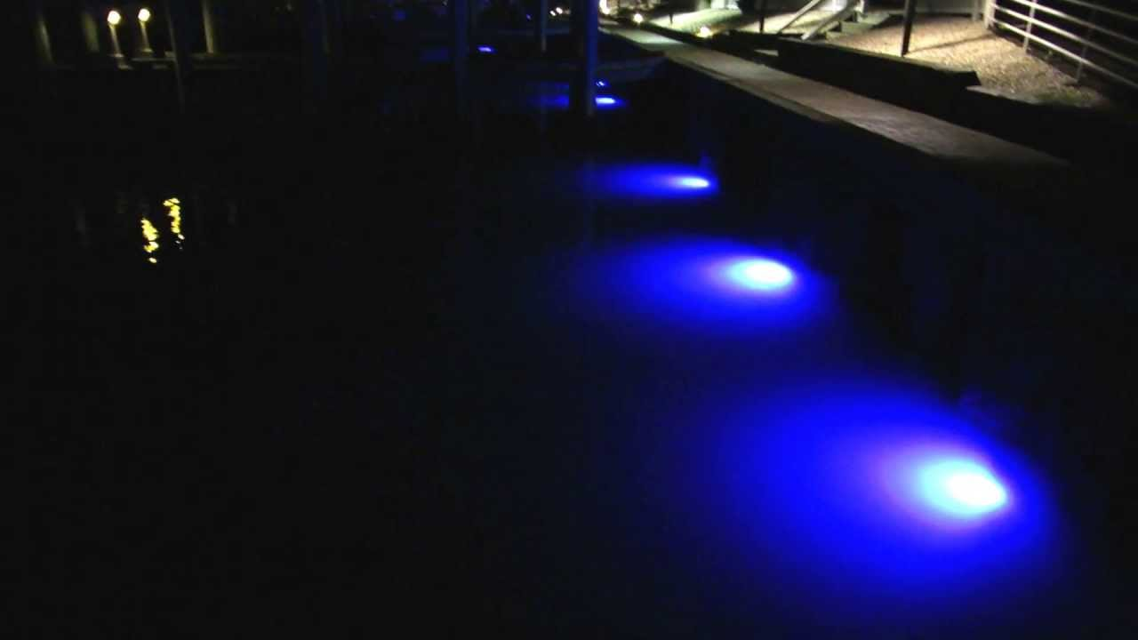 loomisled 24 led blue dock lights at flying bridge restaurant and