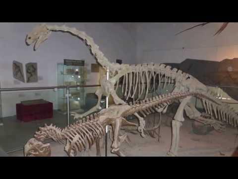 Dinosaurierausstellung