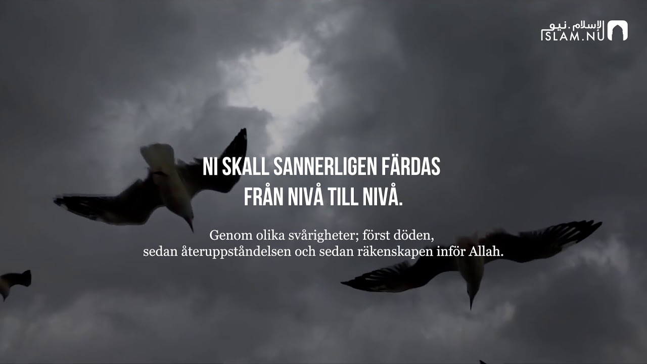 Surah Al-Inshiqaq - Hanan Attaki