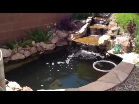 3000 gallon koi pond and 300 gallon stock tank youtube for Koi pond removal