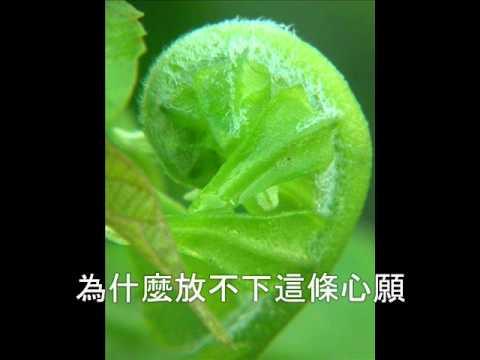 三年 - 黃清元