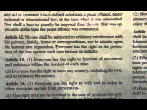 Article 12 universal declaration of human rights