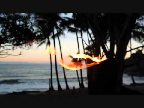 TURTLE COVE GAY BEACH RESORT QUEENSLAND AUSTRALIA