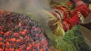 Pottan Theyyam (Travel Kannur Kerala videos)