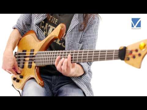 Harmonics on Portrait of Tracy by Jaco Pastorius [SUB ITA] - Alex Lofoco Bass Lesson