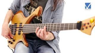Harmonics on Portrait of Tracy by Jaco Pastorius  - Alex Lofoco Bass Lesson