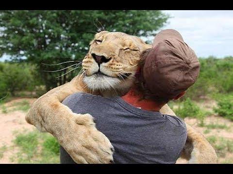 Animals Hugging Humans - Cutest Animal Hugs People Videos Compilation 2018 [BEST OF]