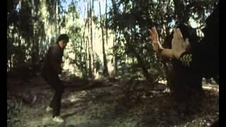 Карен Шеперд - битва в лесу