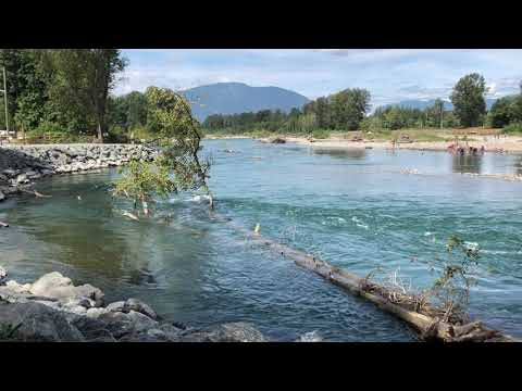 Vedder River Activity