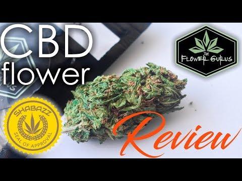 The Flower Gurus| CBD Hemp Flower Review [Lifter, Elektra
