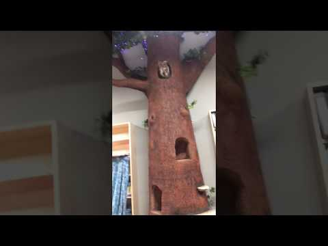12' tree with fiber optic foliage for the Bookery by Oneail FX Studios