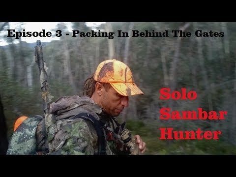 Episode 3 - Solo Sambar Hunter - Packing In Behind The Gates
