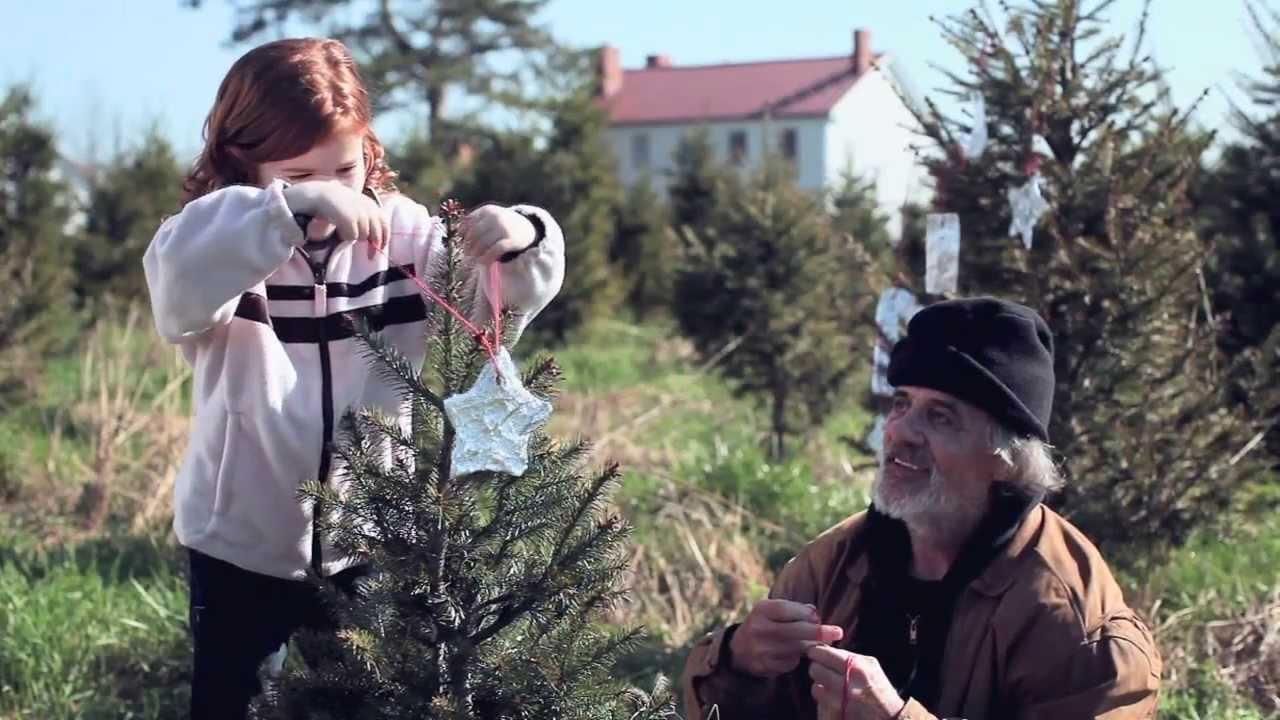 Tree Presents For Christmas