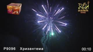 P9096 Хризантема (1,25