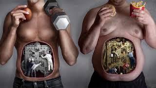 Витамины в овощах и фруктах. Что следует принимать и в каких количествах.