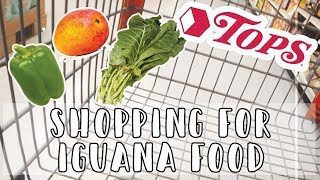 Shopping For My Iguana @ Tops // Grocery Haul!