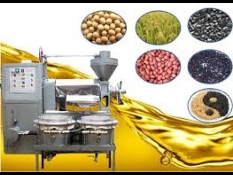 Machine d'extraction huile d'arachide, Presse oil, best oil press. Selling around the world