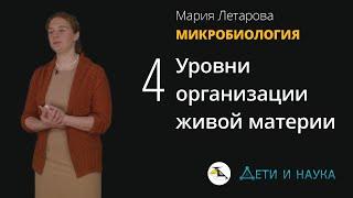 Уровни организации живой материи.  Мария Летарова - Микробиология #4