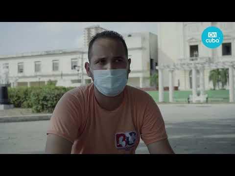 Postales: Habana Verde y el sueño de replantar cada árbol talado