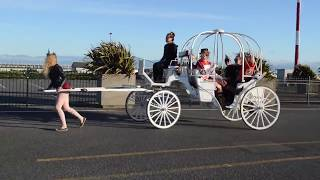 How difficult is it REALLY to pull the Victoria Carriage Tours horse wagons?