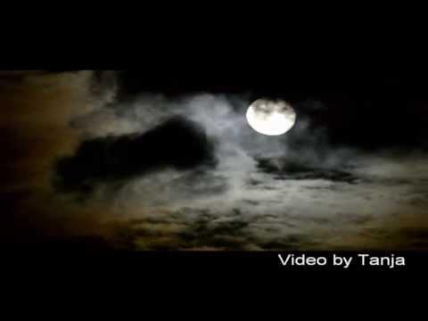 Bap Kennedy -  Moonlight Kiss