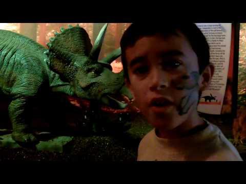 The Torosaurus Dinosaur