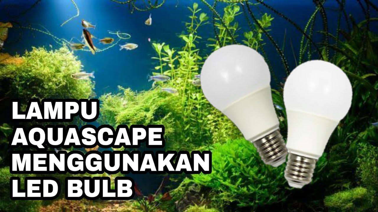Membuat Lampu Aquascape Mudah Murah Meriah Youtube