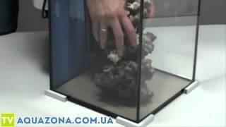 Aquael Nano Reef - морской мини аквариум. Нано аквариум морской Акваель(Купить прямо сейчас морской мини аквариум Aquael Nano Reef на сайте http://aquazona.com.ua/cat/akvariumi/aquael/1591.html по самым горячим..., 2014-01-23T22:17:38.000Z)