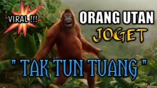Video JOGET TAK TUN TUANG download MP3, 3GP, MP4, WEBM, AVI, FLV November 2018