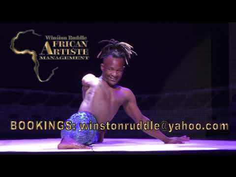 AFRICAN ACROBATS  MANAGEMENT CONTORTION ACT 1