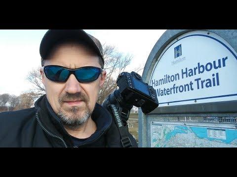 Hamilton Harbour WaterFront Trail -- Nikon D500 - Sigma 150-600 mm f/5.0-6.3