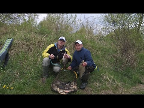 весна прикормка для карася на ловлю фидером